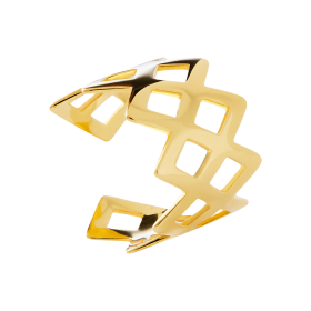 King gold ring
